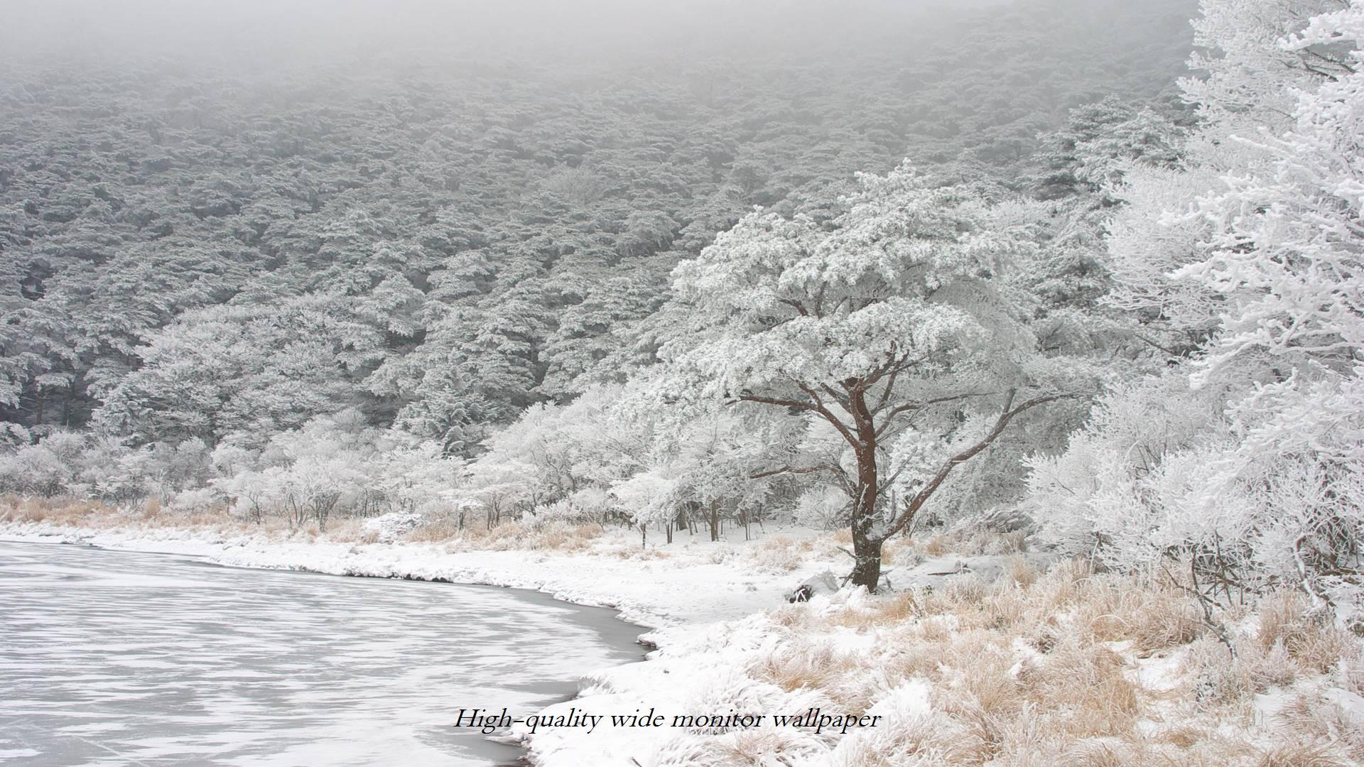 白紫池の樹氷(壁紙サイズ1920×1080)